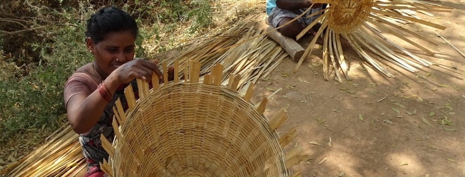 Eradication of poverty among the Tribal People through Income Generating Activity
