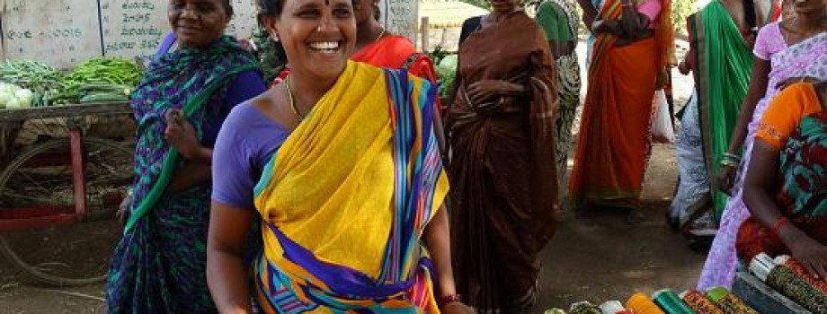 Micro Enterprises Programme to Reduce Poverty among 40 Rural Impoverished  Dalit Women